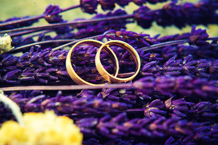 casaments-yes-i-do-36