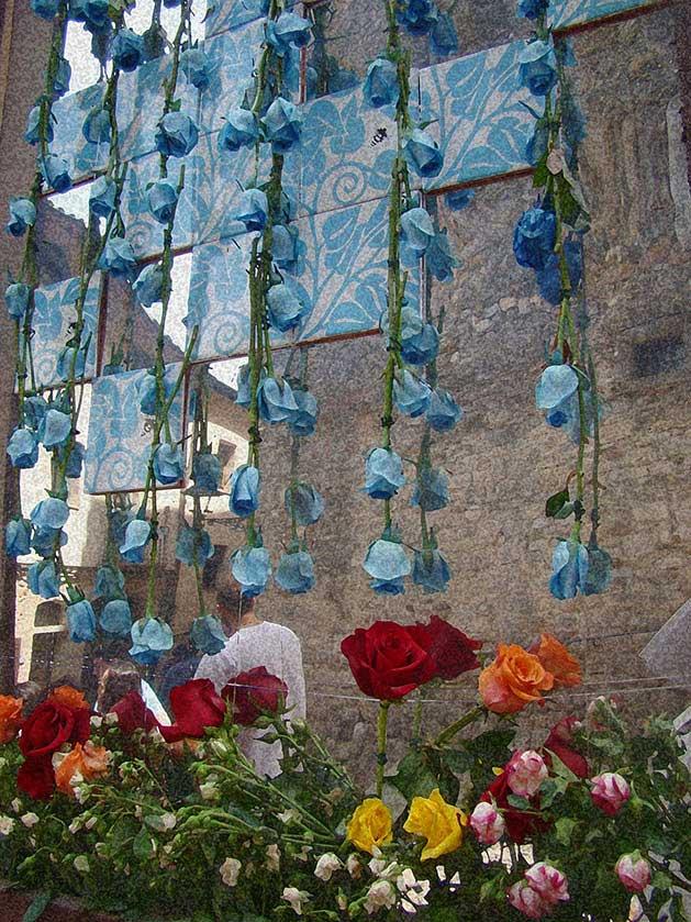 girona-temps-de-flors11